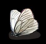http://img-fotki.yandex.ru/get/9108/97761520.d1/0_7fc47_9c4075d8_orig.png
