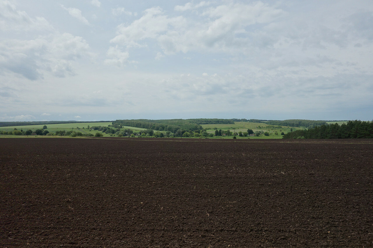 поля-луга-перелески орловщины