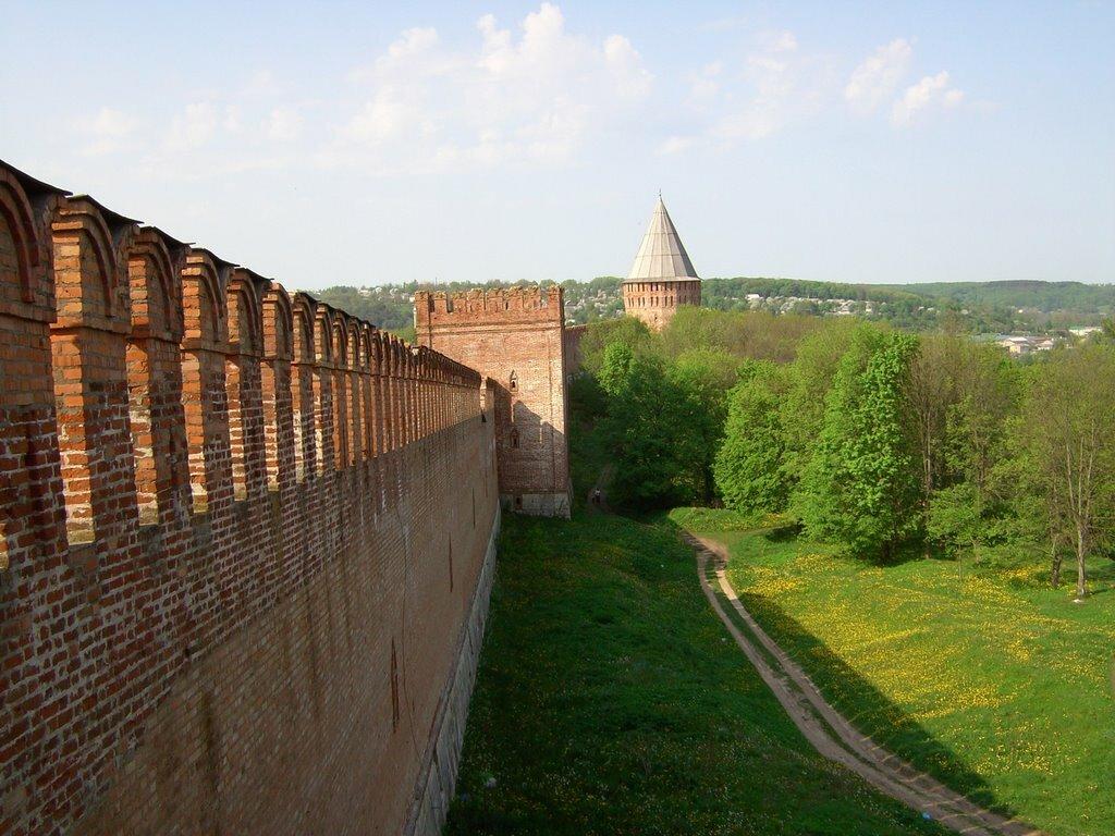 смоленская стена фото