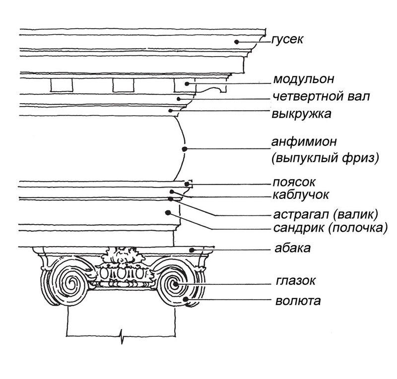 Схема расположения основых элементов и их названий в капители и архитрава ионического ордера