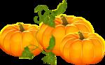 Осень60