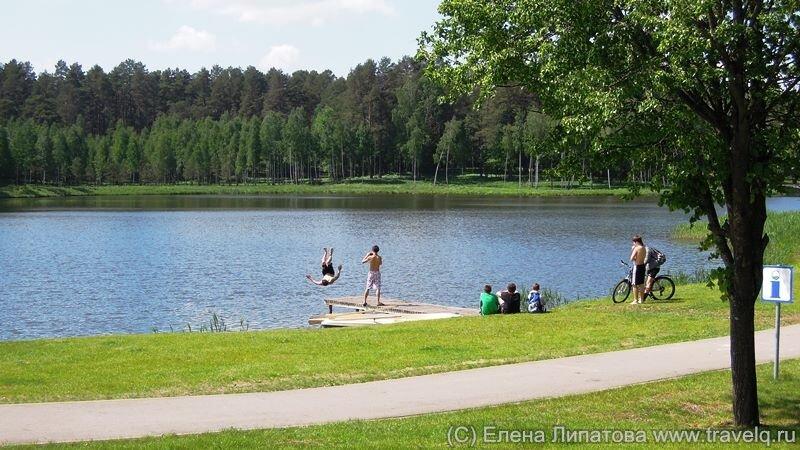 Друскининкай. Озеро Друскас