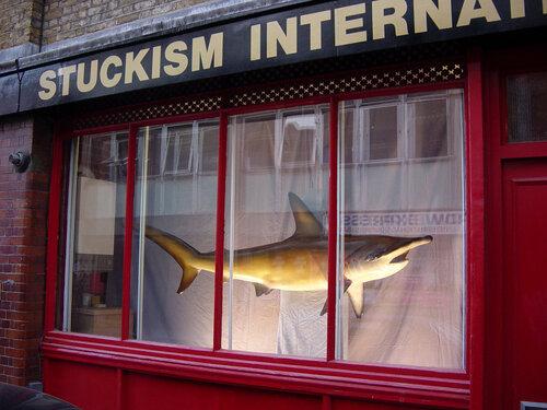 акула за 12 миллионов