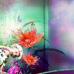 Fuzzy Gardens (17).jpg