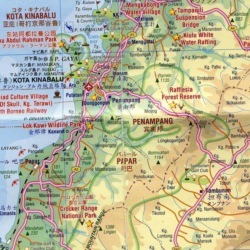 Где и когда искать Раффлезию в Малайзии?