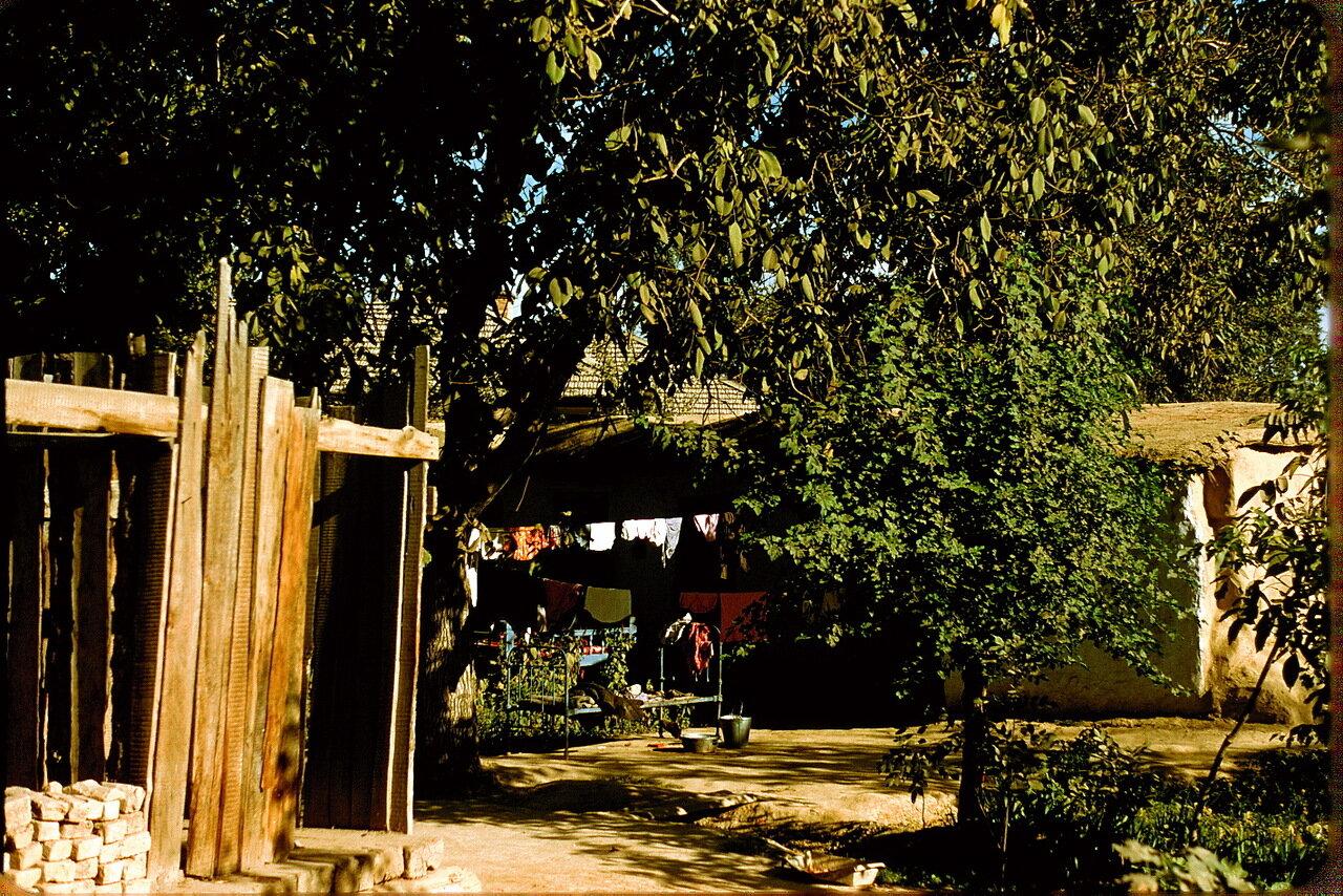 Ташкентский дворик