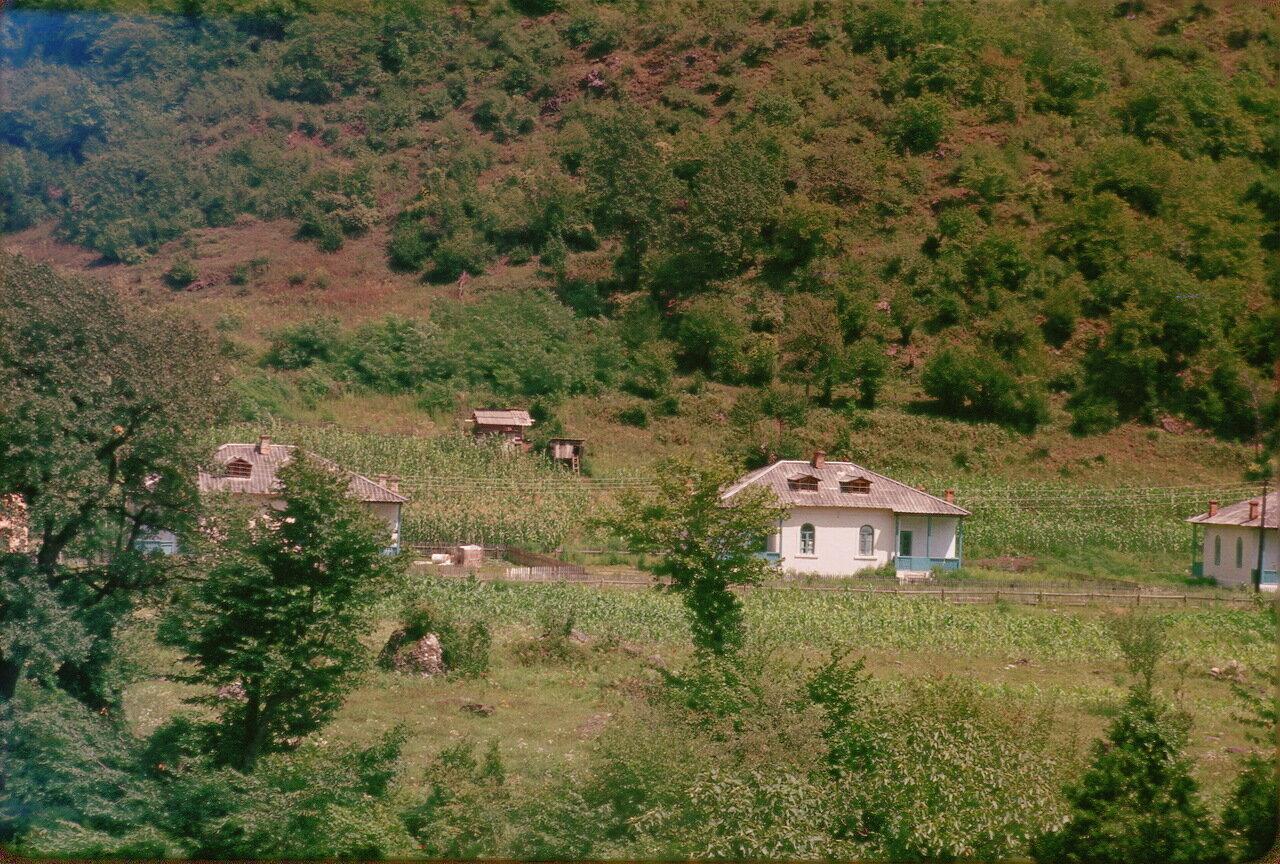 Абхазия.По дороге к озеру Рица. Долина Гега