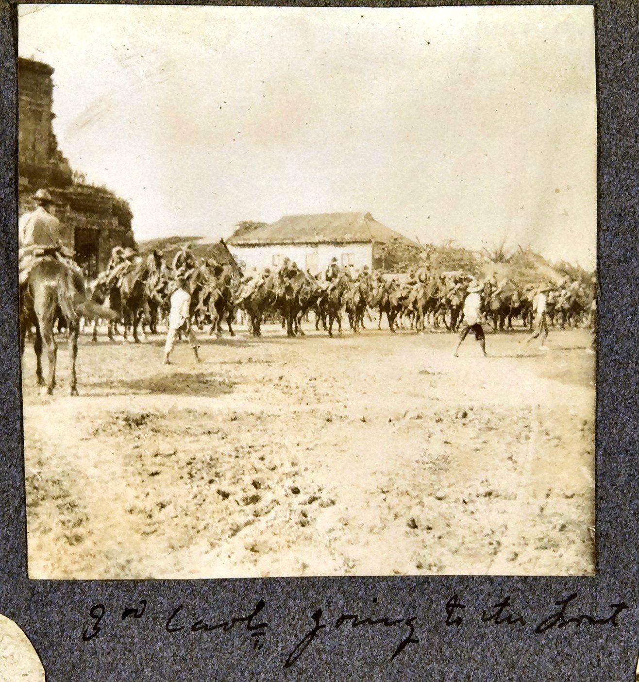 18. 3-я кавалерийская дивизия идет во фронт