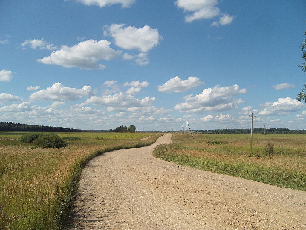 полевые дороги