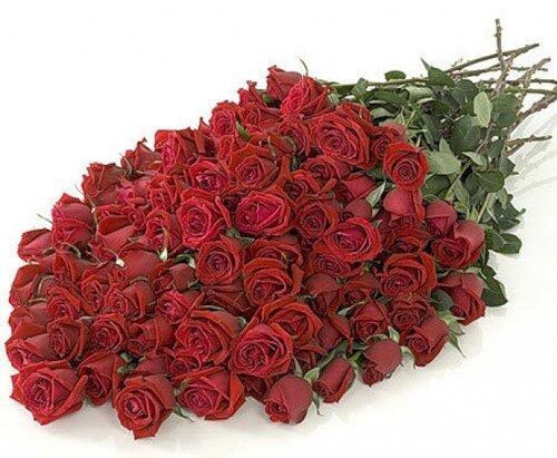 Великолепный букет красных роз открытка поздравление картинка