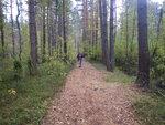 участок дороги на Абрамовку