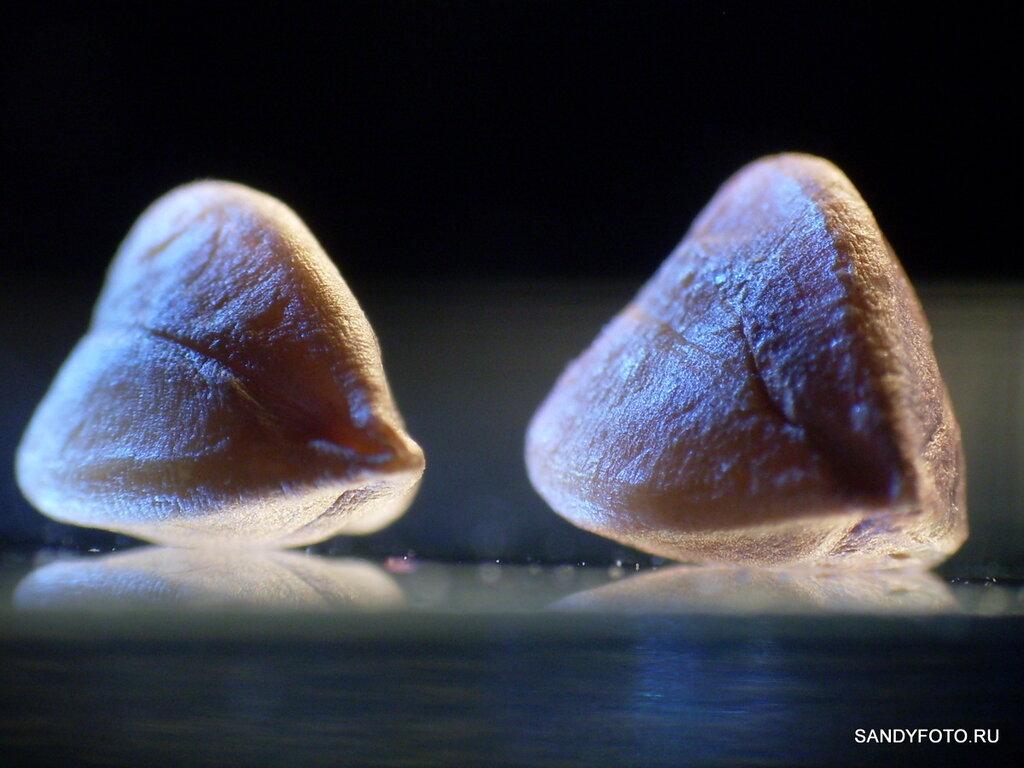 Художественные фотографии с Samsung S860 #2