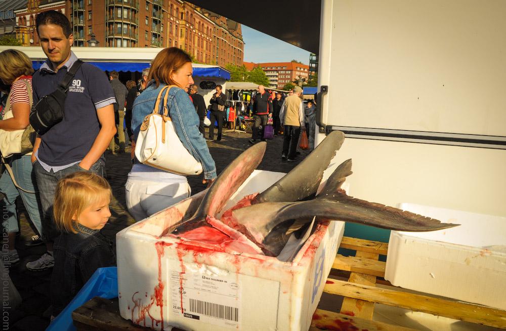 fischmarkt-(11).jpg