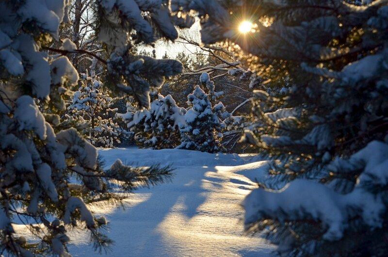 Пришла зима волшебная, как сказка...