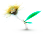 Flower-Tech-Mika.png
