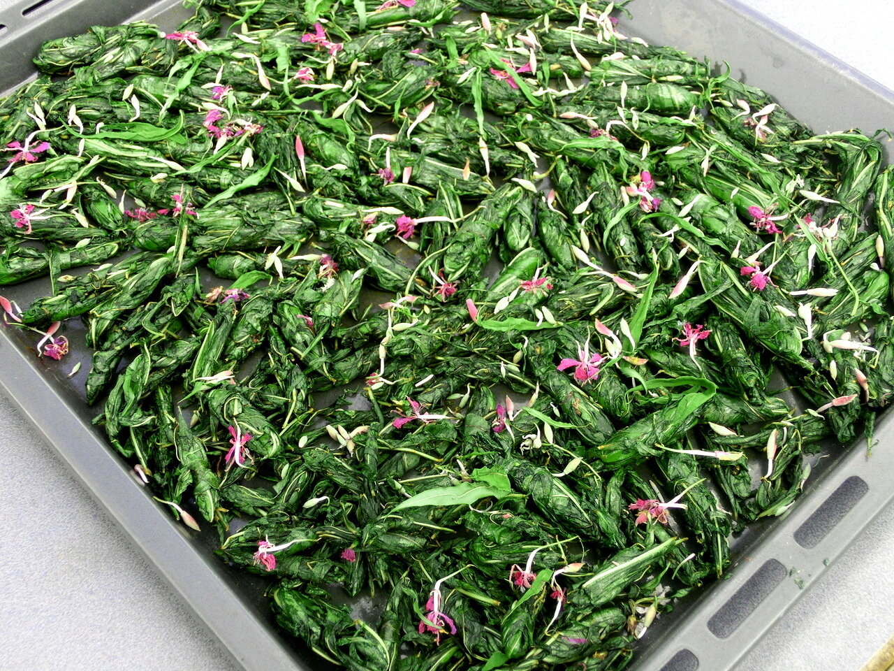 Как собирать и сушить Иван-чай, правильная заготовка 71