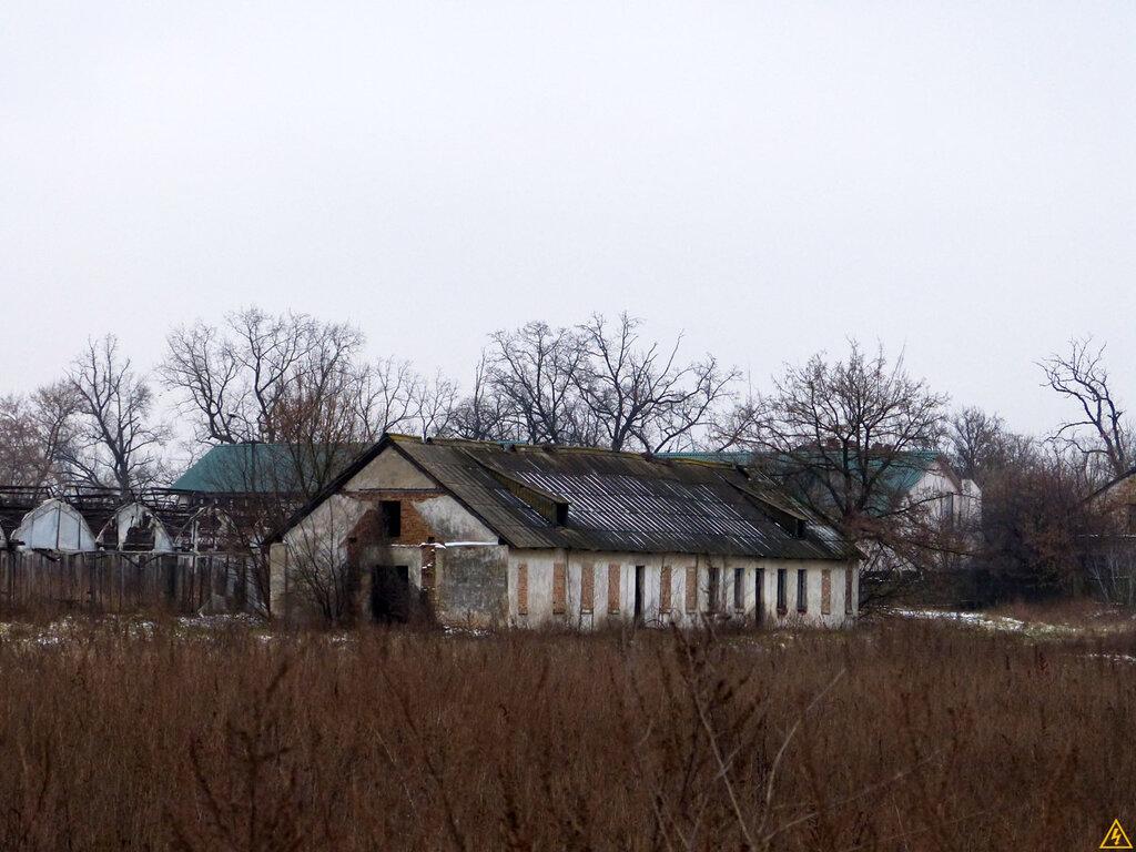 Теплицы в Киеве