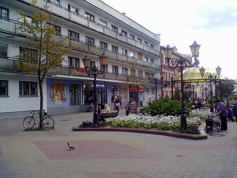 Цветы на улицах города