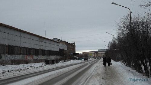Фотография Инты №6118  Куратова 1в