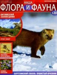 Журнал Наша флора и фауна №120