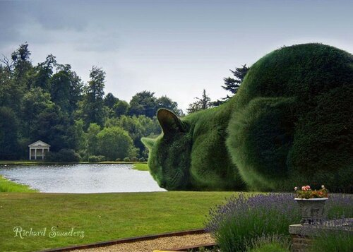 "проект ""The Topiary Cat"""