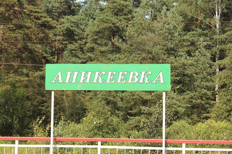 Аникеевка