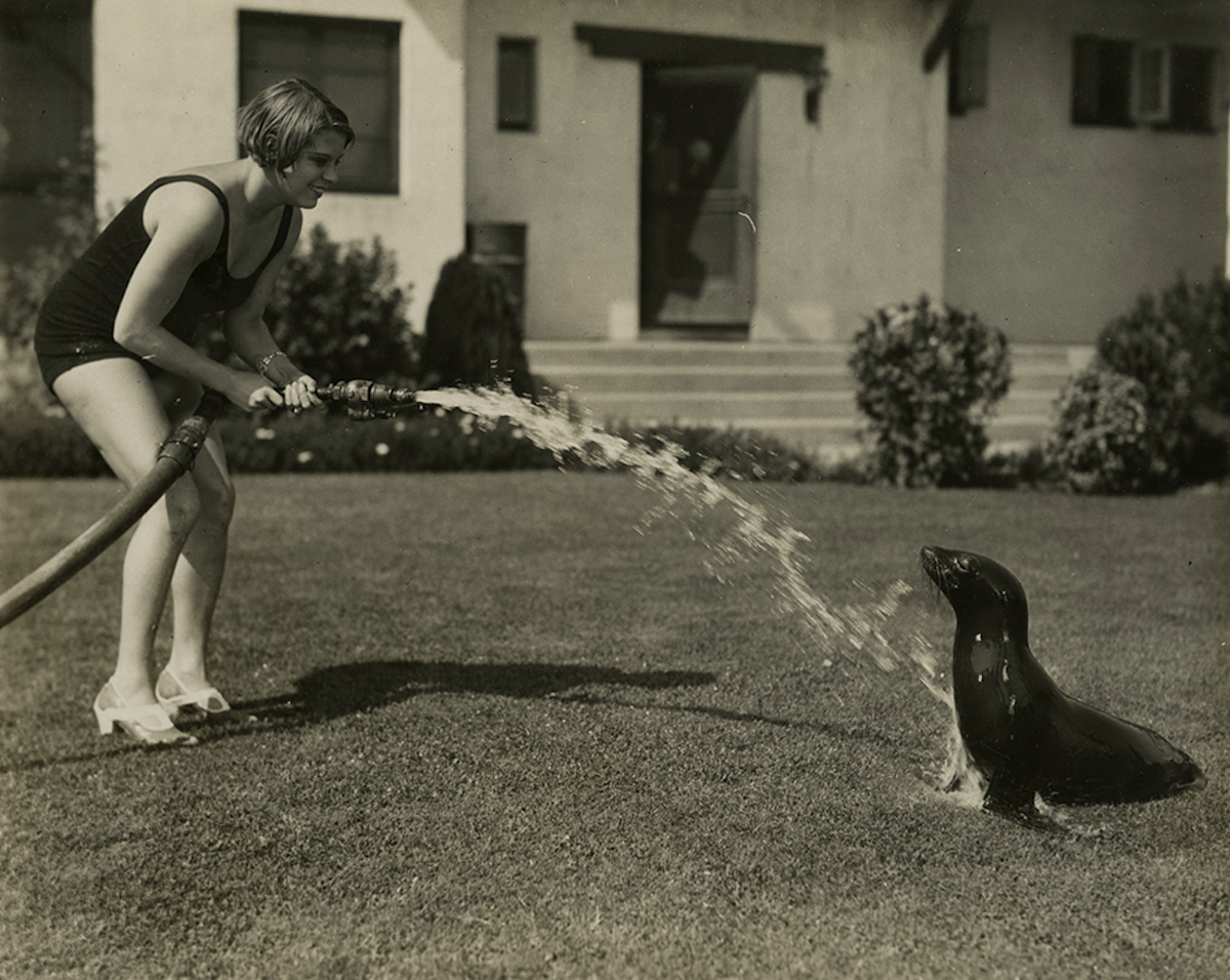 Marjorie Beebe and Tooie the seal, 1920s.jpg