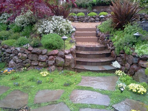 Каменистые сады ландшафтный дизайн