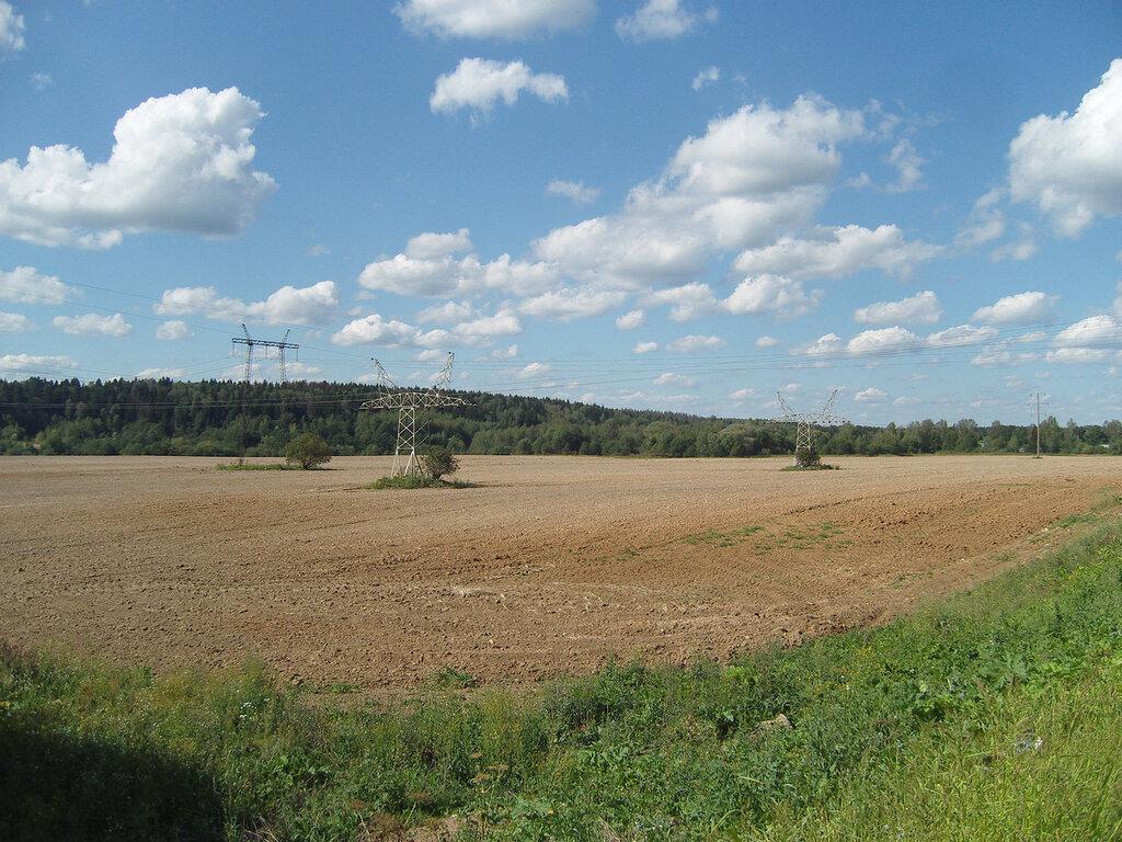 низкая ЛЭП над убранным полем