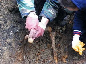 В бельцкой части карабинеров найдены останки человека