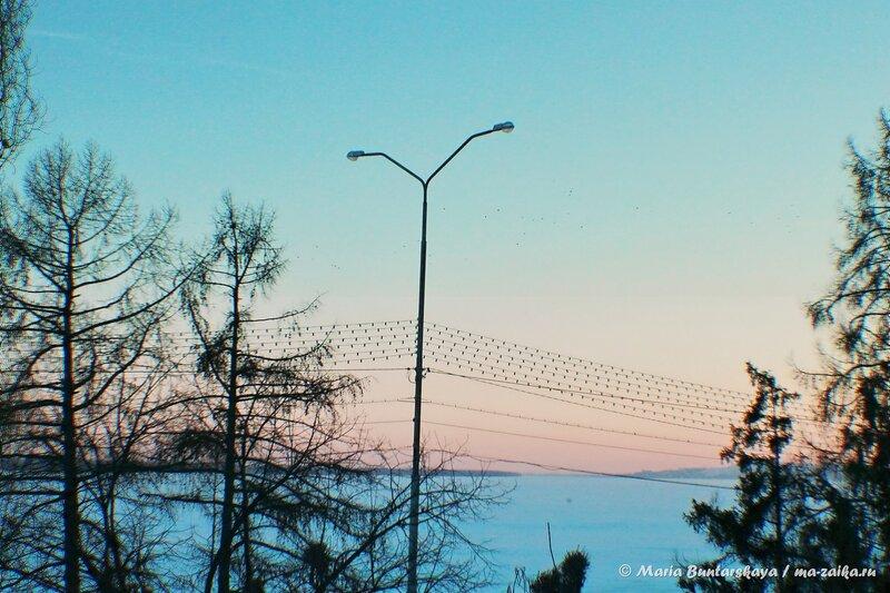 Закат на Набережной, Саратов, 25 февраля 2014 года