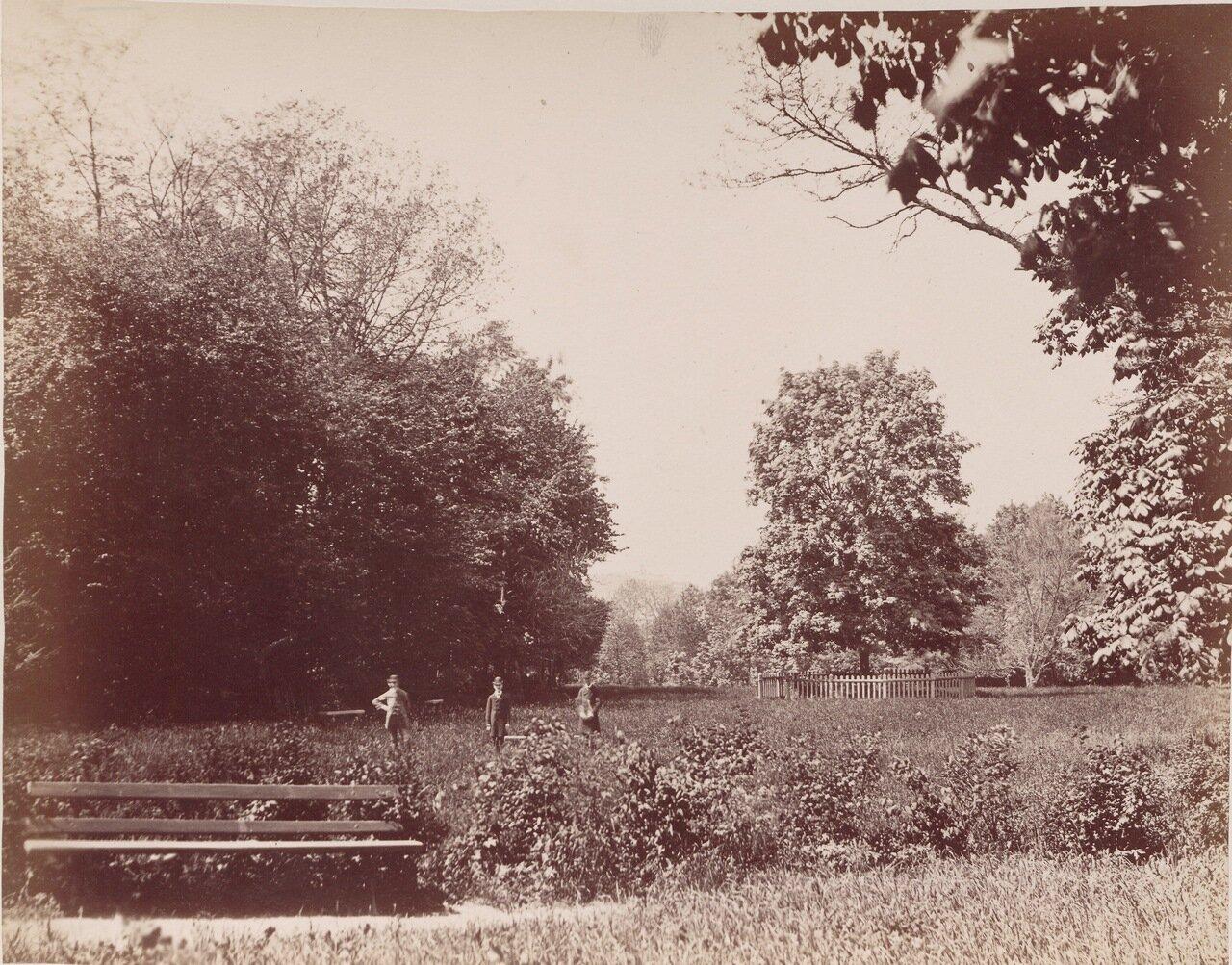 Сад  в Кельце