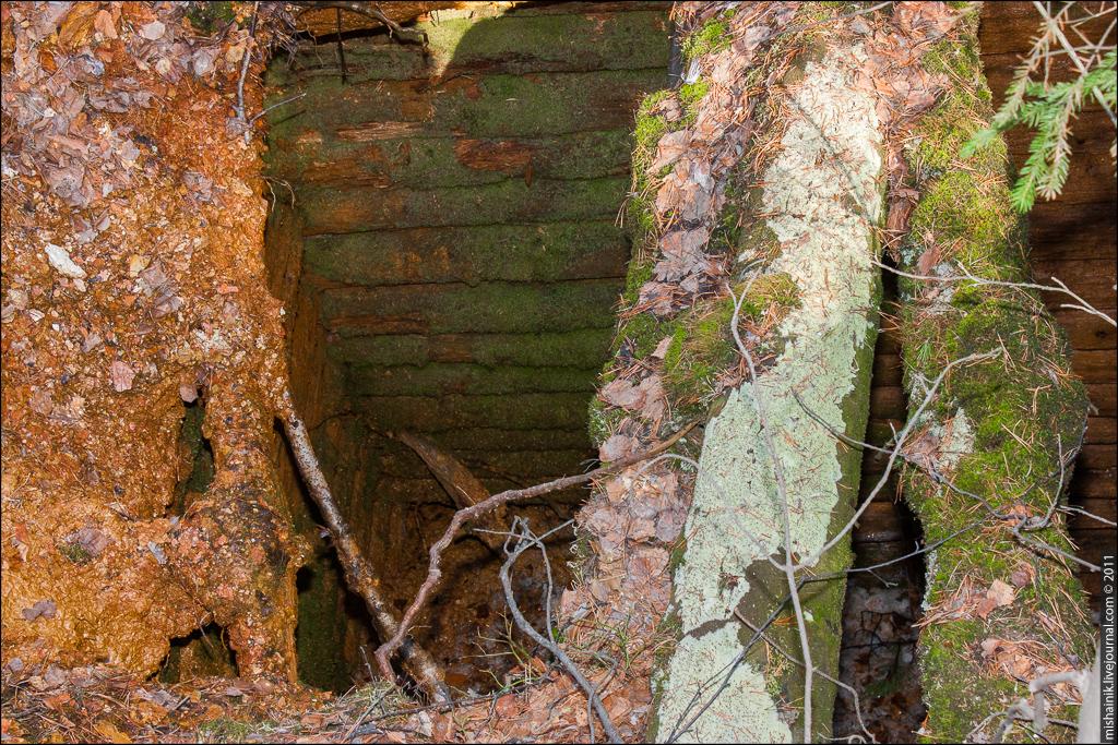 Рябининская разведка на колчедан в Шайтанской даче