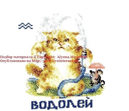 ВОДОЛЕЙ (21.01-19.02)- ЗНАК