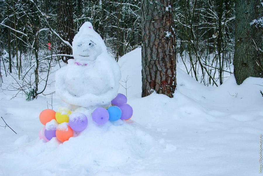 снеговик в саровском лесу