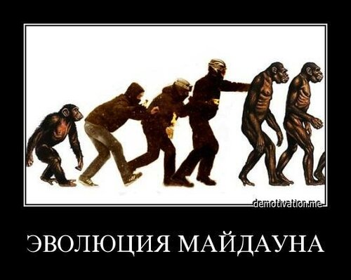 Эволюция майдауна