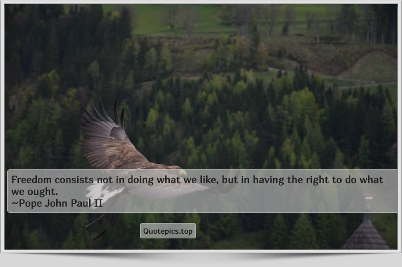 Freedom consists not in doing what we like, but in having the right to do what we ought. ~Pope John Paul II
