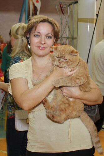 """Международная выставка кошек """"Удивительные кошки"""", 5-6 октября 2013, г. Сургут, ХМАО 0_ddae6_56dd8084_L"""