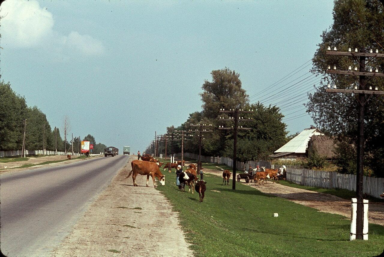 Возвращение в Европу по дороге Киев-Львов. Деревня Небылица