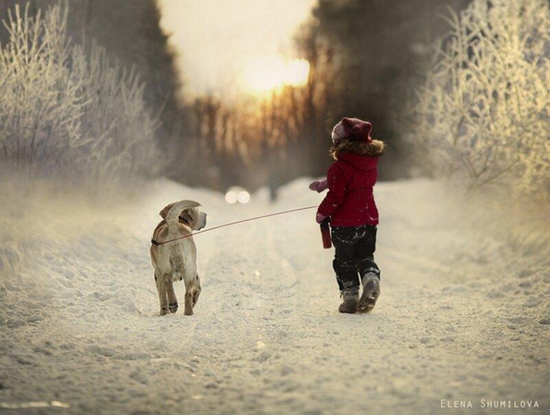 1 Last-winter-walk....-«Фотограф Елена Шумилова»