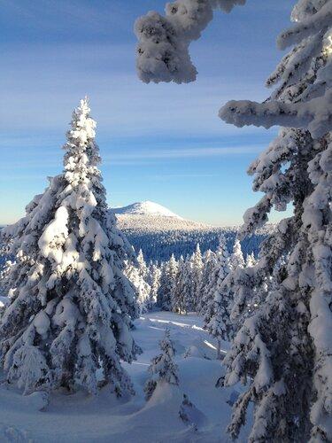 Гора Круглица, самая высокая вершина хребта Таганай (Челябинская область). Автор фотографии - Максим Дубовкин