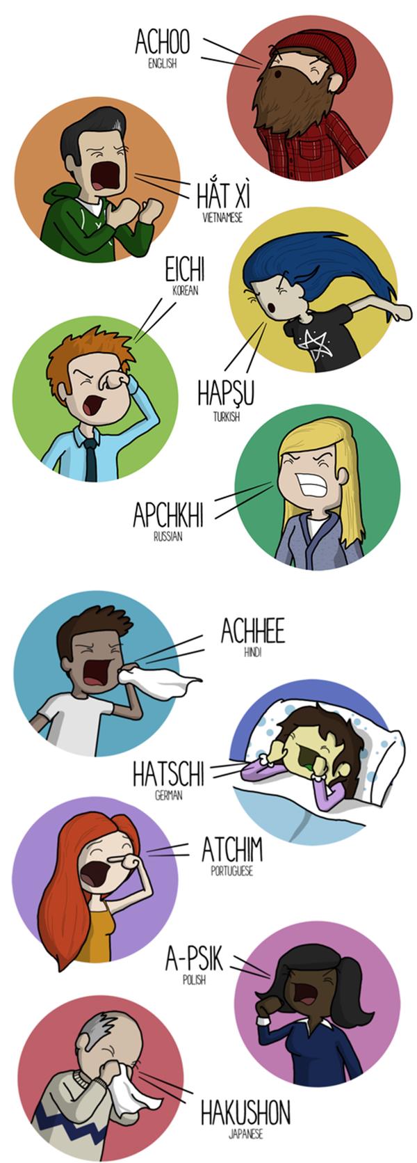 Как чихают на разных языках (1 фото)