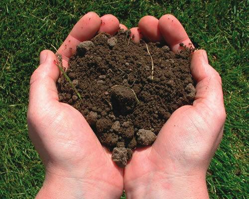 Растительный грунт и польза от его применения в Москве и области
