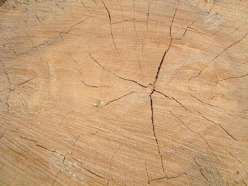 Текстуры дерева
