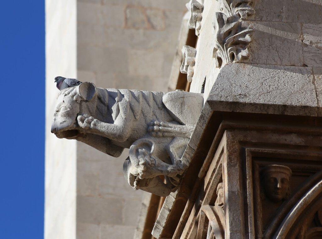 Таррагона Кафедральный собор. Gargoyle Гаргулья