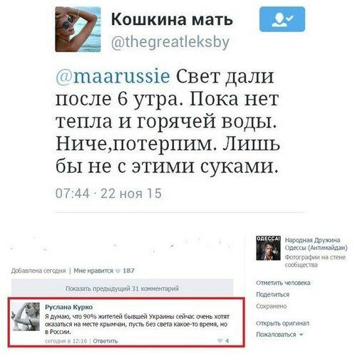 """Хроники триффидов: Как """"укроактивисты"""" Крым без электричества оставили"""