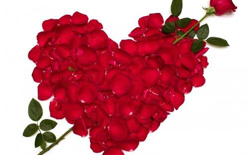 стихи о розах