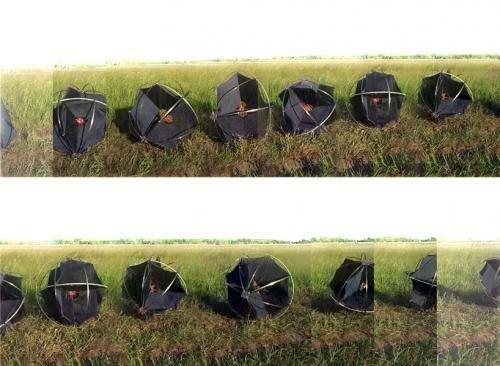 робот перекати-поле