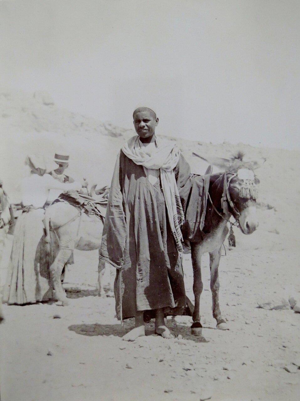 Египет. Мальчик с осликом