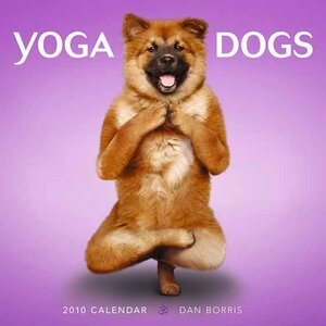 йог-собака